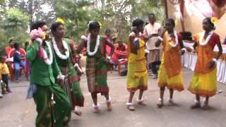 Kherwad Bir Sodey Korba Chhattisgarh 2015 (Group Dance)