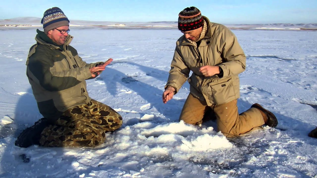 Ma Hauling In A Lake Oahe Sd Tip Up Pike Youtube