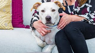 Finn - Adoption Ever After - Home & Family