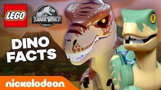 LEGO Jurassic World Dinosaur Facts & Quiz 🦕 #TryThis