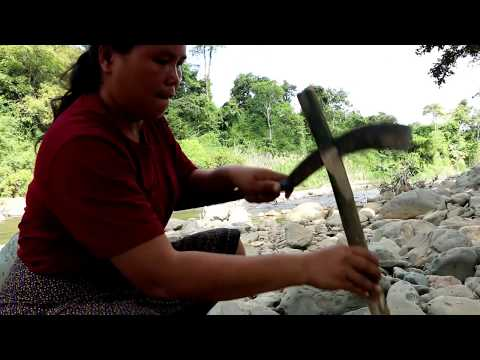 Primitive Technology - find shoot big fish - cook  eating delicious  55