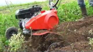 видео Мотокультиватор Pubert VARIO 55 HC3