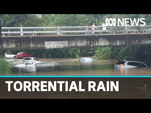 Floods And Rescues In Queensland And NSW, More Rain Forecast | ABC News