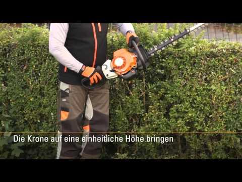 Бензиновый кусторез STIHL HS 82 Т (75 см)