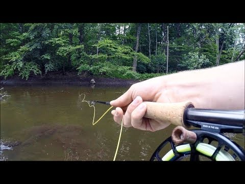 Finally!! Fly Fishing AGGRESSIVE River Pike