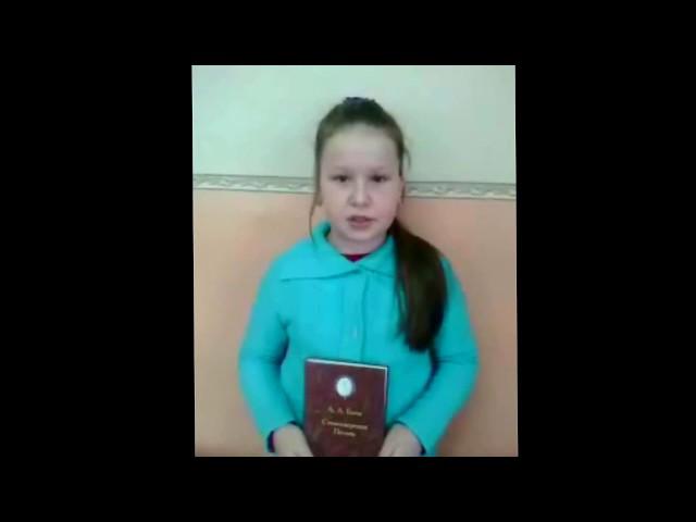 Изображение предпросмотра прочтения – ЕленаАнистратенко читает произведение «Мы встречались с тобой на закате...» А.А.Блока
