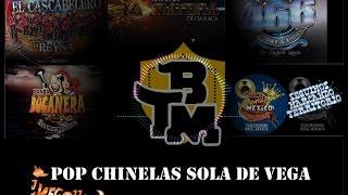 Las más Carnavaleras y Sones de Vega [TIERRA MOJADA/BANDA BUCANERA/BANDA MATONA] Y MAS....