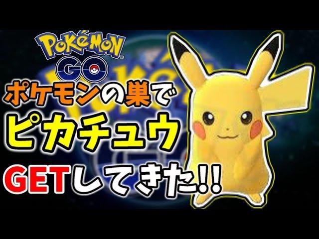 〔ポケモンGO〕ピカチュウゲットしてきた!ポケモンの巣情報&強化の育成検証!!〔pokemon go japan〕
