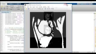 Digital Image Processing Projects Using Matlab Pdf - YT