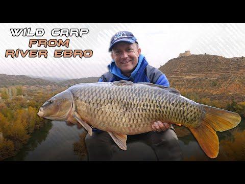 Wild Water Adventures  part 29. - The Ebro Method- A film by Gábor Döme