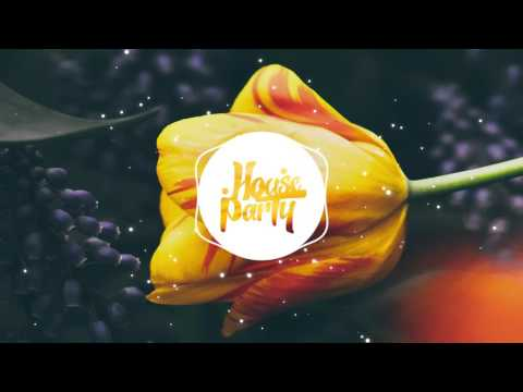 Syn Cole Ft. Joshua Radin - Follow Me (VIP Mix)