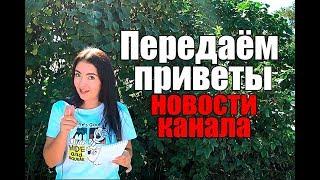 Передаём приветы Новости канала Принимаю  вызов влог моя жизнь