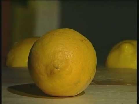 Лимон. Как выбрать лимон.
