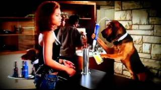 Bud Light - Dog Sitter - 2011 Super Bowl Commercial Ad - Hillarious Dog Sitting Long Version
