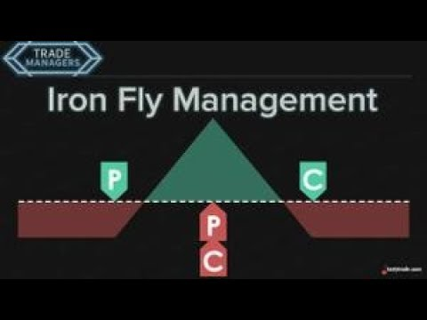 Iron Fly Management | Trade Managers