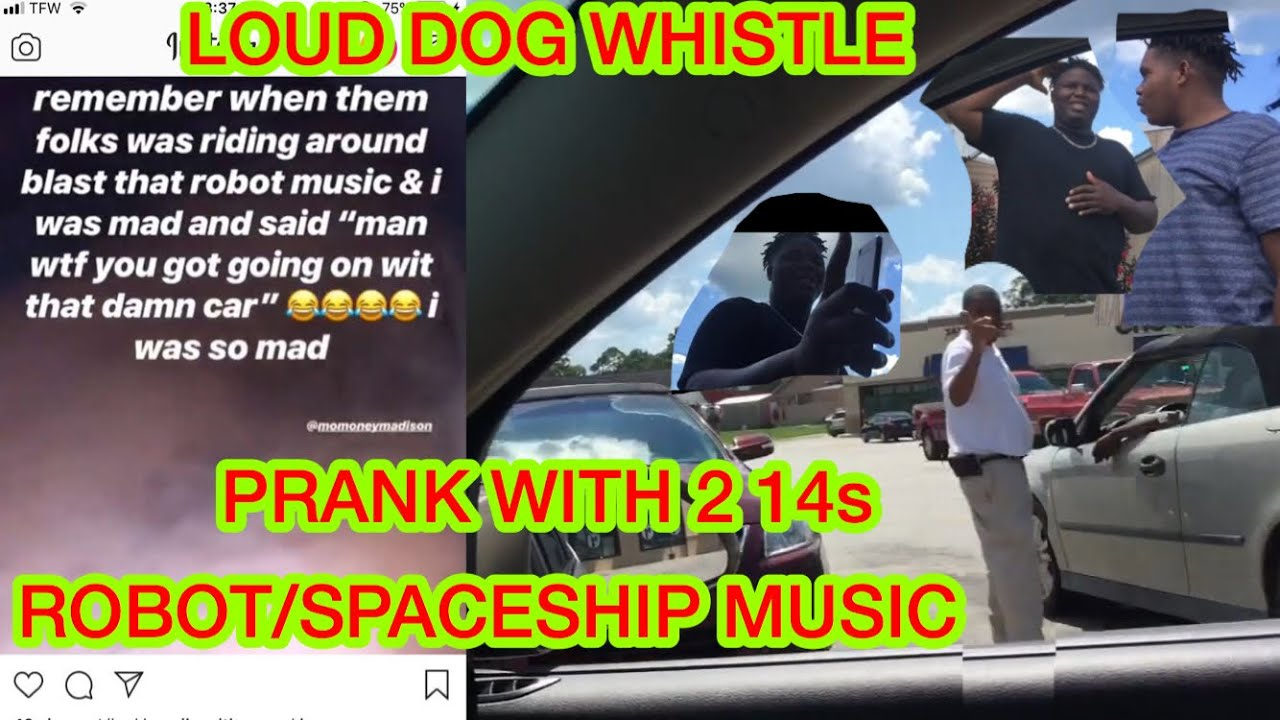 LOUD DOG WHISTLE PRANK IN A CAR