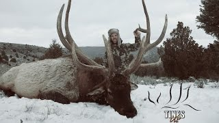 Popular Videos - Utah & Hunting
