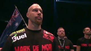 David Haye vs Mark de Mori (2016 january) - Full Fight HD