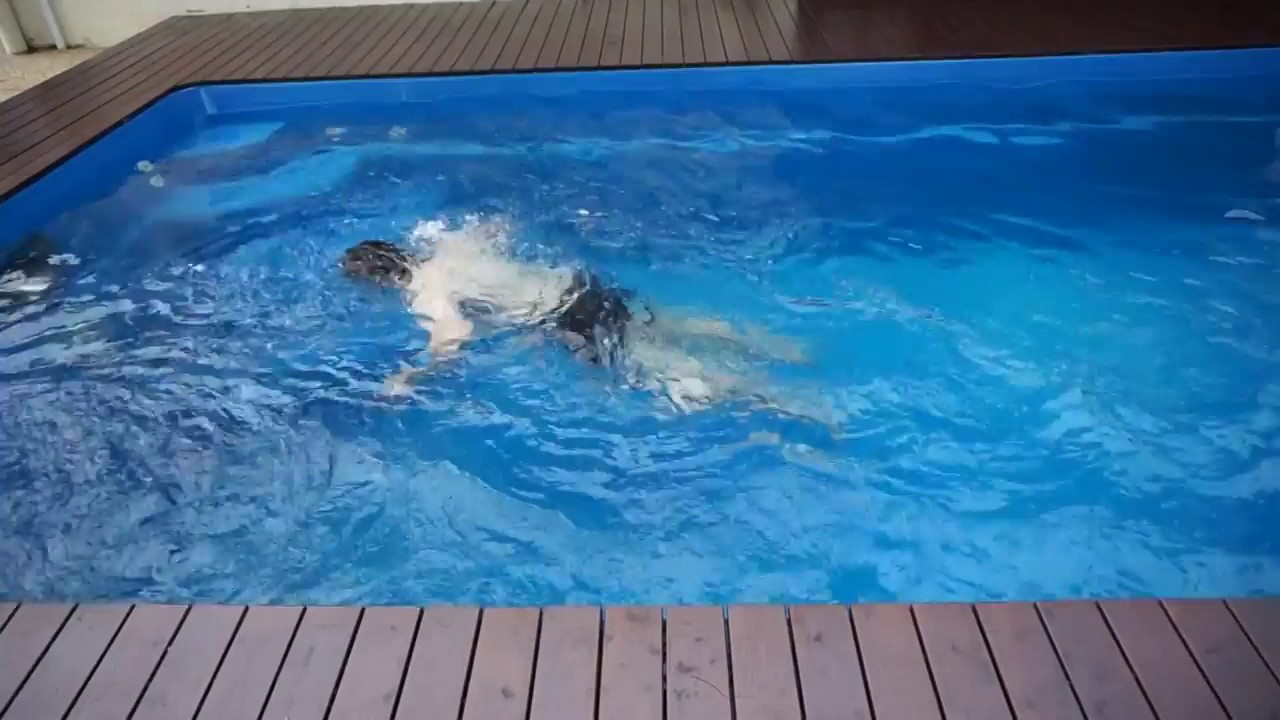 Hydro- One Fibreglass Pool Swim Jet System for Endless ...