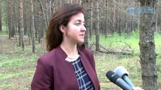 Дзержинск принимает участие в федеральной акции «Береги лес!»