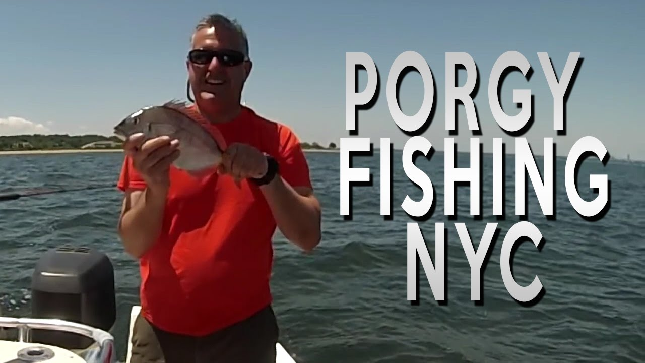 Porgy scup fishing long island ny youtube for Long island sound fishing report