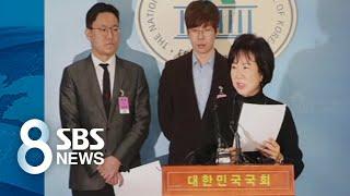 아이콘 공방 부른 손혜원 의혹…여당서도 '이익충돌' 지적 / SBS