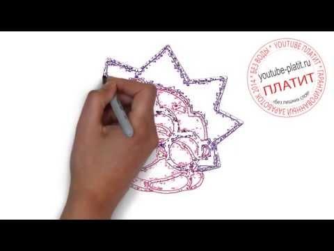 Смотреть смешарики ежик Как нарисовать ежика из смешариков ...