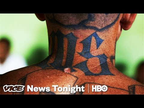 MS-13's Active Members Are Laughing At Trump's Crackdown (HBO)
