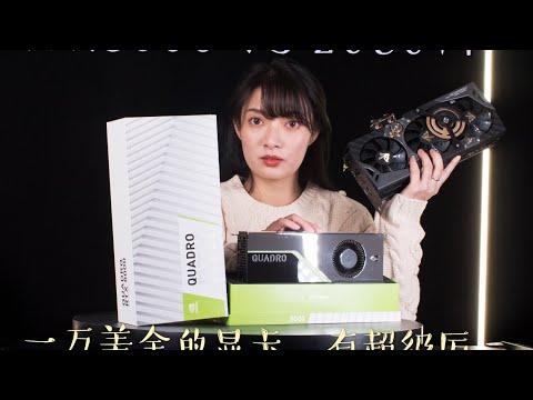【二斤自制】Quadro RTX8000 VS RTX 2080Ti 九段,两张总价超过十万元的显卡对决,究竟谁胜谁负呢?RTX8000又是如何一年间,售价跌出一辆汽车的呢?(CC字幕)