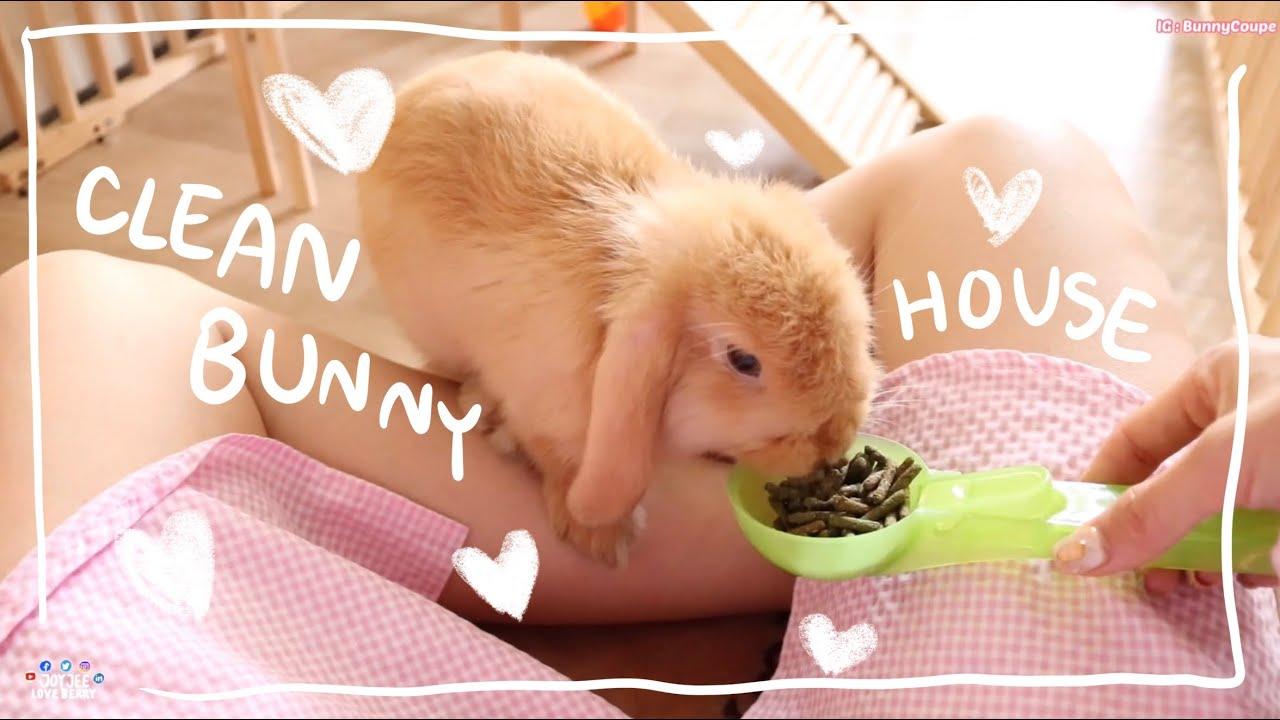 Download Ep.3 Howto ทำความสะอาดบ้านน้องกระต่าย #BunnyTTCoupe | Joyjee Loveberry
