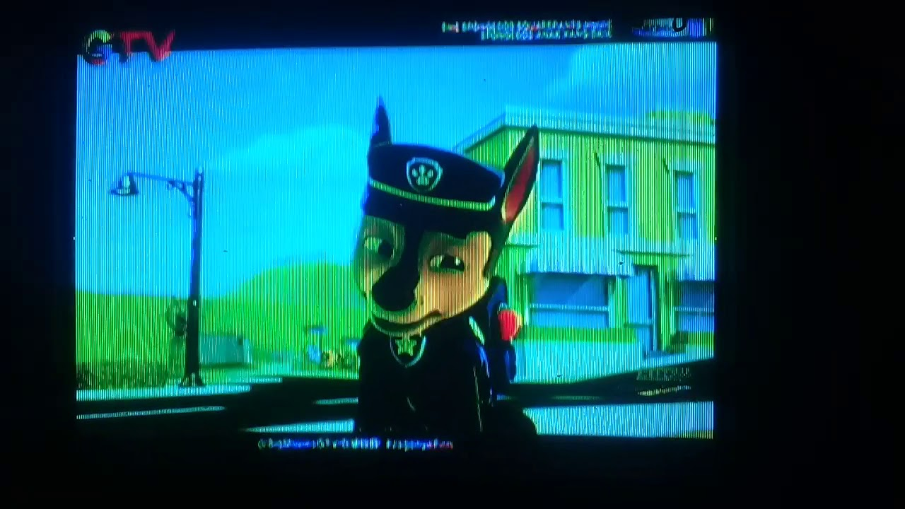 paw patrolpups save the sea turtles indonesian chase