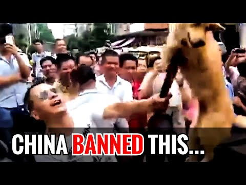 China finally BANNED this! (2.5 mil views on FB 😱)