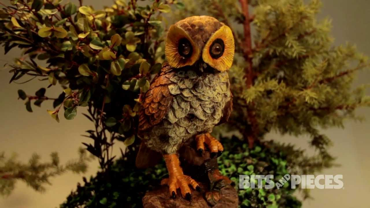Motion-Activated Electronic Garden Owl - 46914 - YouTube