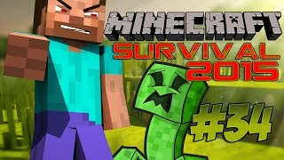 Minecraft Survival 2015 ITA #34 - Testa dura