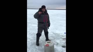 Смешное видео, рыбалка на балансир не клюёт, зимняя рыбалка Воже, опытный рыболов