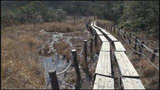 葦毛湿原から岩崎・豊橋自然歩道ハイキング