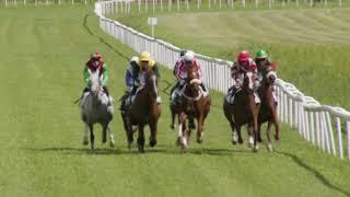 Vidéo de la course PMU CRITERIUM DES 2 ANS
