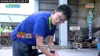 【鮮乳坊】壹電視 壹WALKER - 最漾牛醫鮮乳大計畫