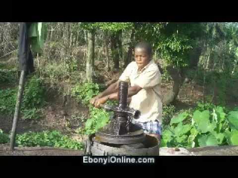 Palm Oil Production in Owutu Edda, Ebonyi State, Nigeria