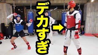 【身長2mテコンドー全日本チャンピオン】とガチスパーリング
