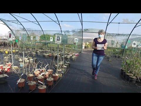 Jardins de Nonères - Cap Emploi : une fructueuse alliance