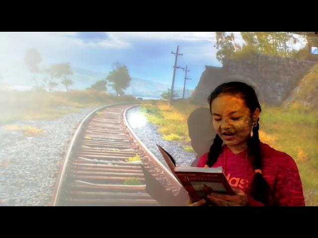 Изображение предпросмотра прочтения – ХадижаИсамутдинова читает произведение «В дороге» И.С.Тургенева