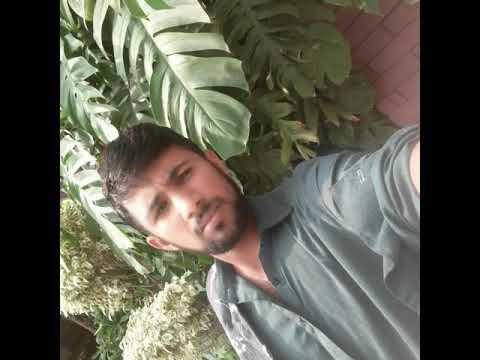 Kashif jaan