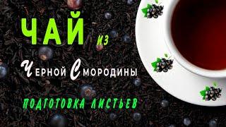Приготовление чая из черной смородины.Часть третья и четвертая.