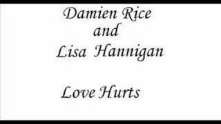 Watch Damien Rice Love Hurts video