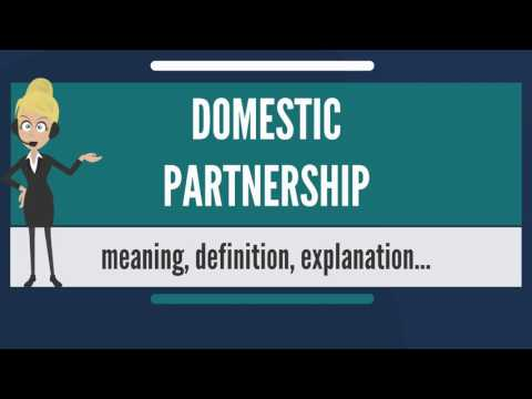 What is DOMESTIC PARTNERSHIP? What does DOMESTIC PARTNERSHIP mean?
