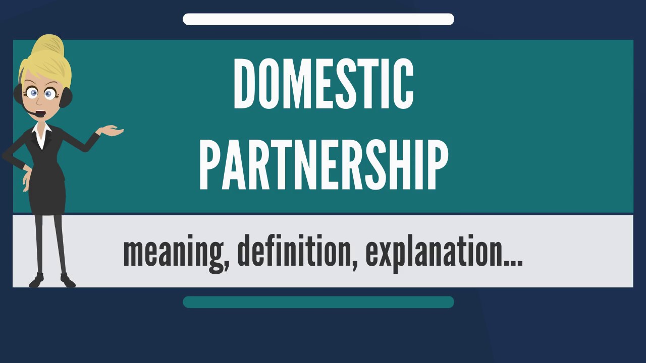 what is domestic partnership? what does domestic partnership mean