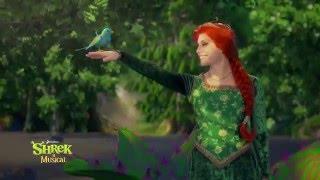 Shrek a Musical-2016.május 29. Aréna