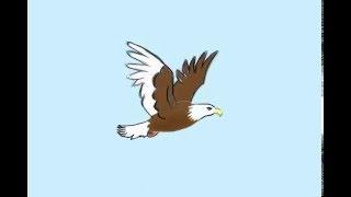 Bald Eagle Flight Animation