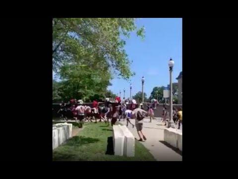 Davie Beatz - Crazy Scene Where A Bunch Of Kids Bum Rush Gates At Lollaoalooza
